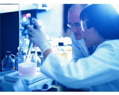 德国DIAS红外测温成像产品在研发中的应用